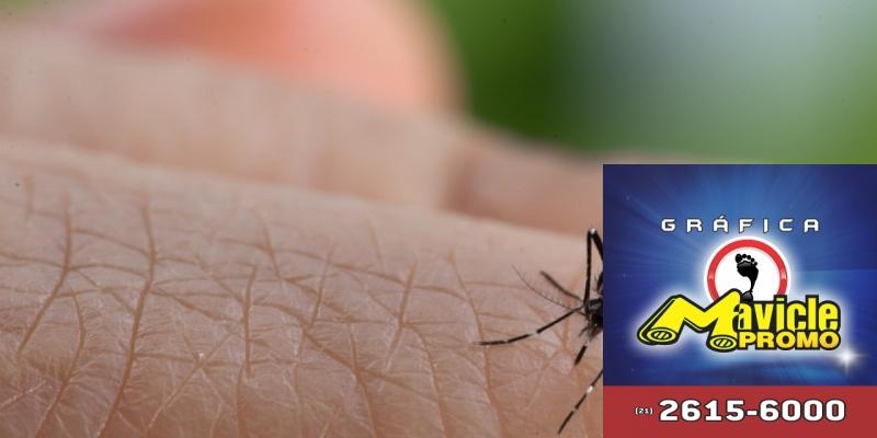 Dengue, zika e chikungunya: cidades em SP em estado de alerta   Guia da Farmácia   Imã de geladeira e Gráfica Mavicle Promo