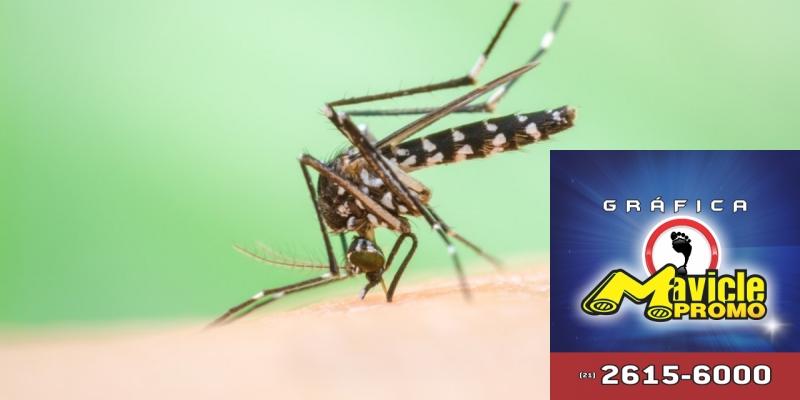 Os Casos de dengue aumentam quase 150% no País   Guia da Farmácia   Imã de geladeira e Gráfica Mavicle Promo